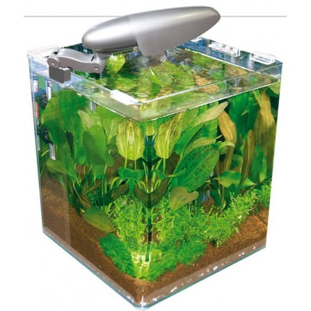 Wave Box Cubo cosmos