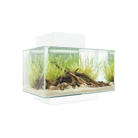 Fluval Edge Led Blanco 23 Litros