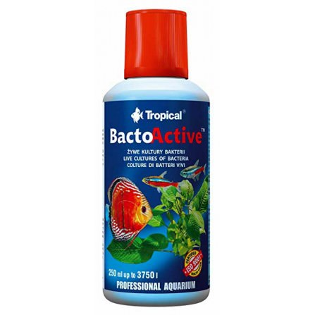 Cultivo vivo de bacterias Bacto Active de Tropical